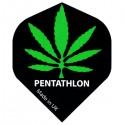 PENTATHLON Standard Cannabis FLIGHTS